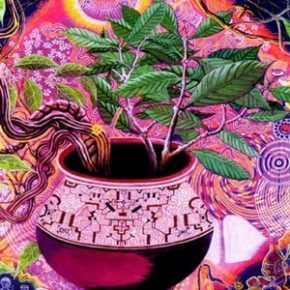 Breaking mental boundaries: psychedelics take you to another realm